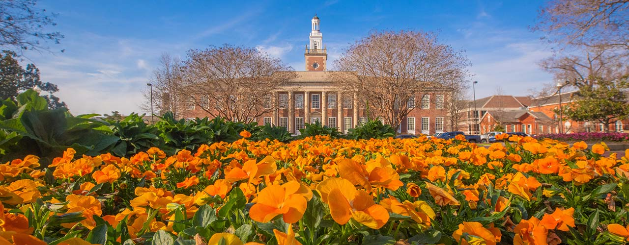 A bed of orange flowers in front of Ross hall